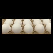Egg Extra Large 1 Piece